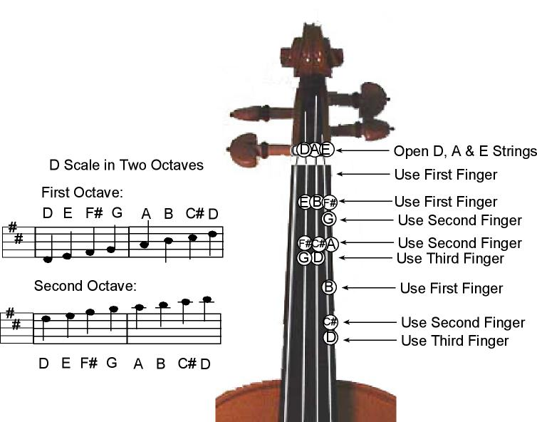 D Major Scale -Two Octave